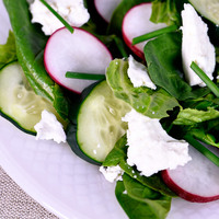 Spring Spinach Romaine Salad Recipe with Radishes and Chives