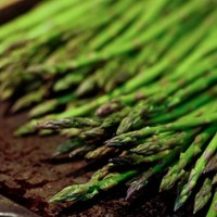Simple Oven Roasted Asparagus Recipe