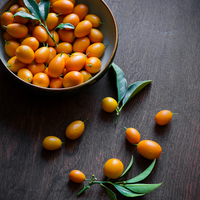 Homemade Kumquat Marmalade with Brie Cheese and Blue Chair Jam Cookbook Giveaway
