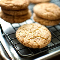 Snickerdoodle – Cinnamon Sugar Cookie goodness