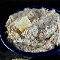 The Best Chicken Dip Recipe